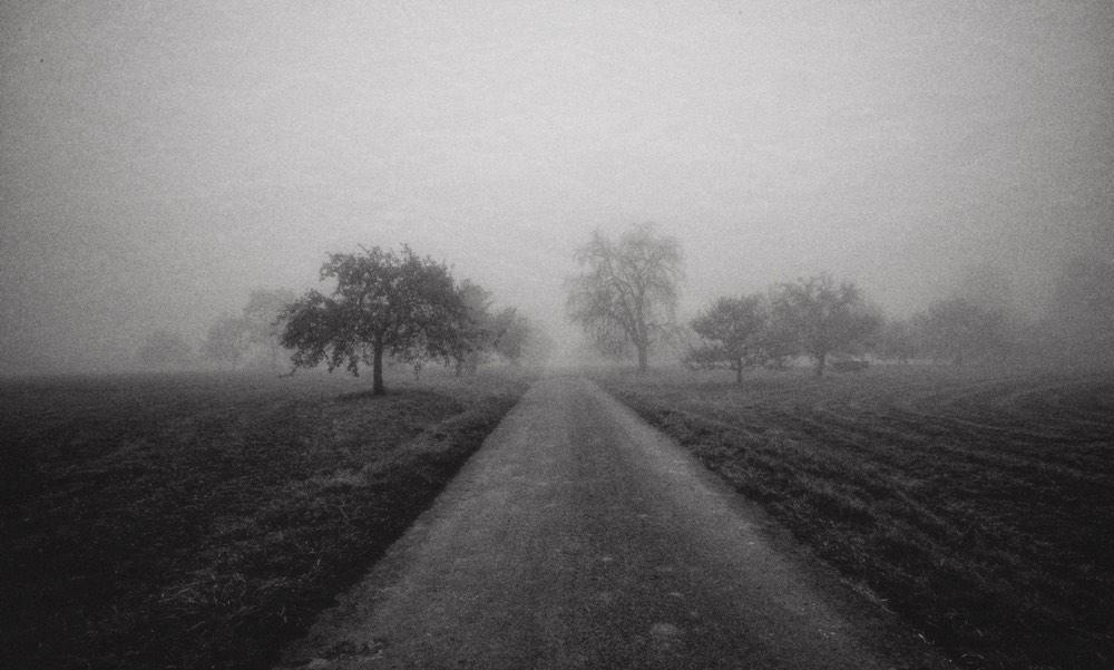 Nicht im Besitz einer Wahrheit, ertaste ich mir meinen Weg durch das Sein wie ein Wanderer im Nebel.